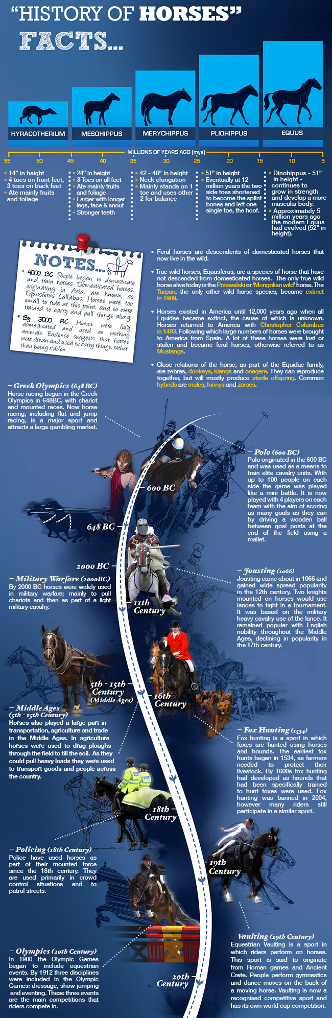 history-of-horses-animals-infographic